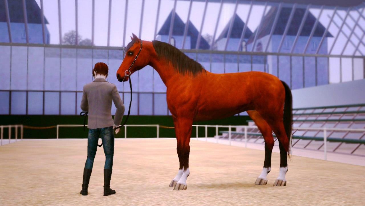 Заявки на удаление лошади из списка - Страница 2 9FPe8Aj5Db0