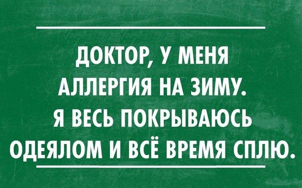 РЕКЛАМА В ОБЩЕСТВЕННОМ ТРАНСПОРТЕ ЦЕНА г. ПЕНЗА