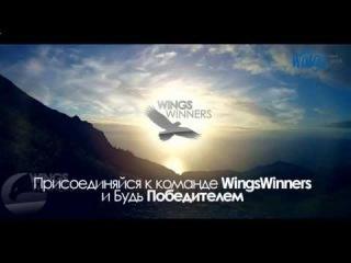 WingsNetwork - компания Вашей Мечты! Построй Будущее с Вингс Нетворк!
