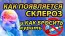 ✿ Как появляется СКЛЕРОЗ ✿ ПОЧЕМУ человек хочет курить и КАК БРОСИТЬ ✿ ответит Андрей Дуйко
