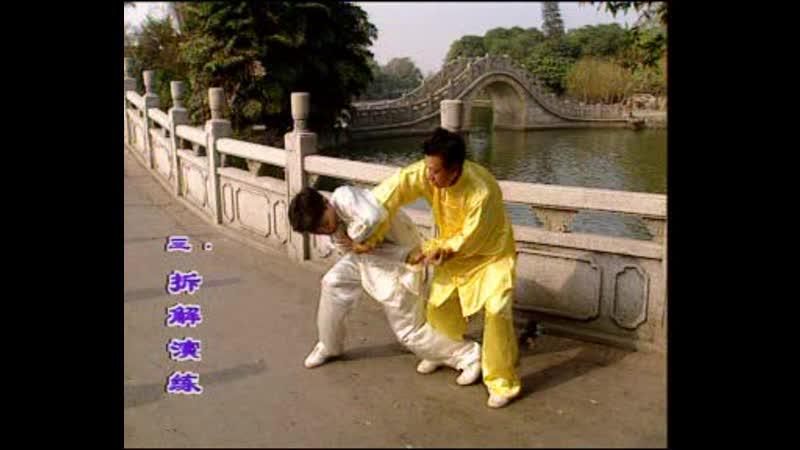 Pan Nam Ving Chun. Part 2.