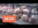 Специальный репортаж: курочка с ядом - Москва 24