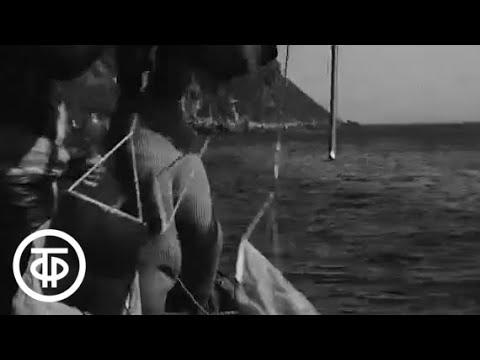Заповедник у кромки прибоя. Командорские острова (1972)