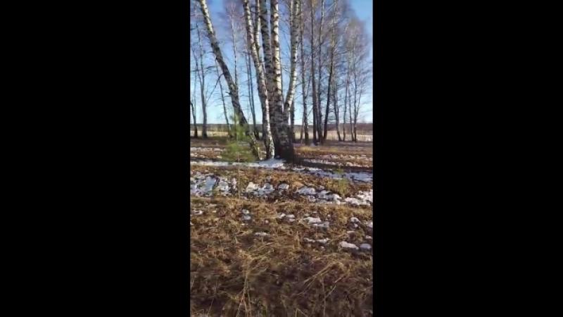 Video-3617347e6f04bd985af1d8fb57b59f5a-V.mp4
