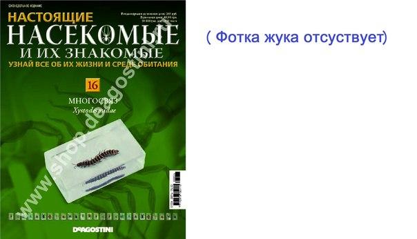 насикомые знакомые вкантакте