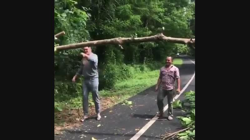 🎬Александр Усик на Бали освобождает дорогу, как спасатель👍😂