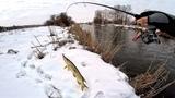 ДЖИГ-РИГ КОСИТ ЩУКУ!! Ловля щуки зимой 2019 на реке. Щука на спиннинг, ловля на джиг-риг, jig rig