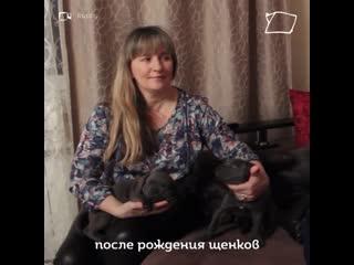 VID-20190318-WA0006.mp4