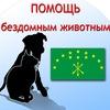 Бездомные животные Майкопа,сообщество волонтеров