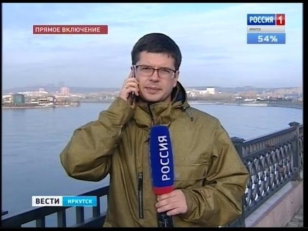 На берегу Байкала с иркутской стороны обнаружили туши нерп