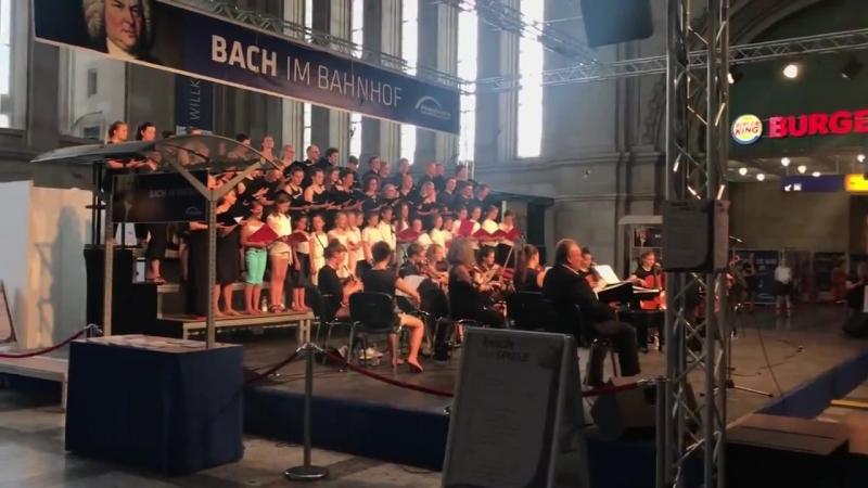 В дни Баховского фестиваля Лейпциг особенно музыкален. Можно услышать-увидеть и
