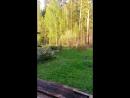 Отдых в Полевском
