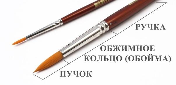 vybrat-kisti-dlya-risovaniya