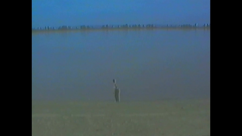 На берегу Амура