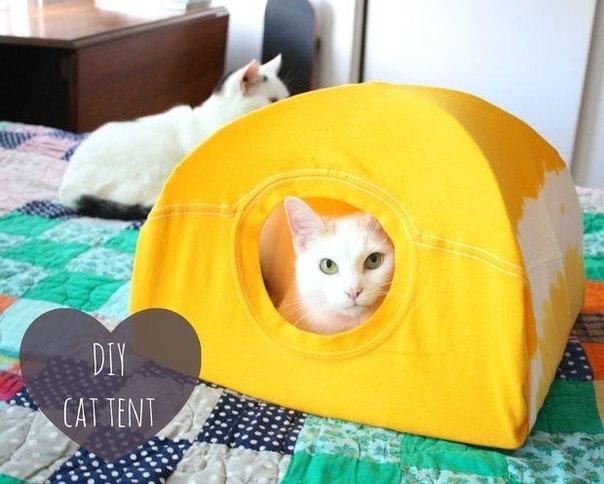 Делаем палатку-домик для любимца из футболки, вешалки и картонки!