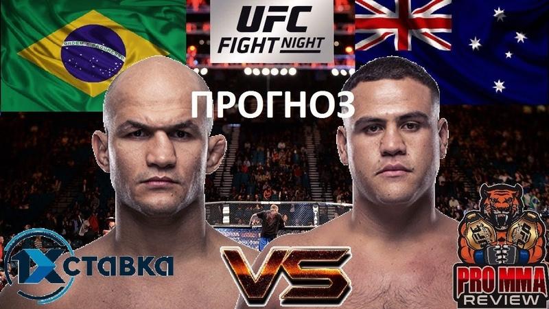 Джуниор Дос Сантос VS Тай Туиваса - UFC Fight Night 142 (обзор и прогноз на бой) / PRO MMA review