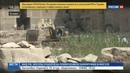 Новости на Россия 24 В Египте нашли 8 метровую статую фараона Рамсеса II