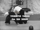 Aikido - Yoshimitsu Yamada Shihan - Tenchi Nage