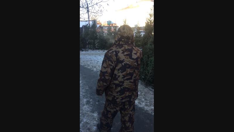 Не законная торговля на гостевом маршруте ШОС и Брикс Борис Дубровский покрывает точки торговли ёлок