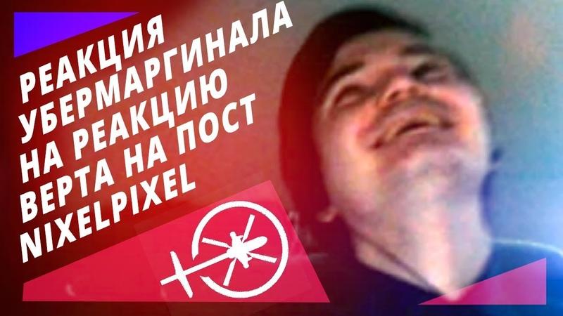Марго смотрит реакцию Вертосексуала на пост NixelPixel | Северные Мемы для Сверхлюдей