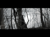 Ergot - The Despair Of The Rotting Christ
