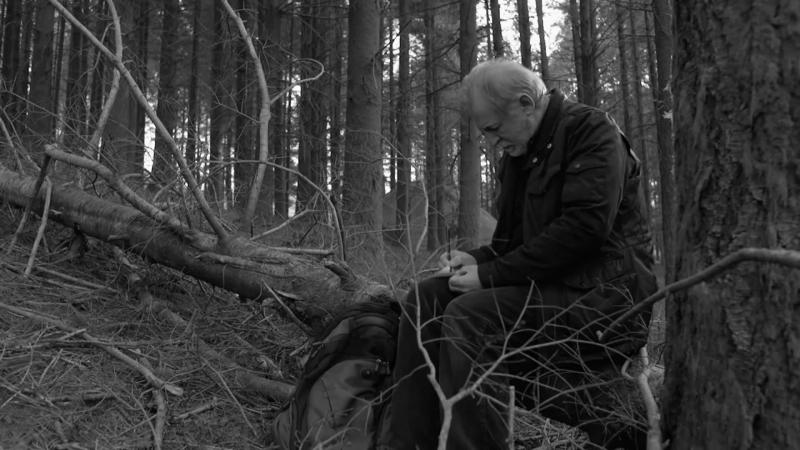 Лес потерянных душ A Floresta das Almas Perdidas (2017) трейлер