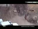 Собака нападает на людей полиция стреляет