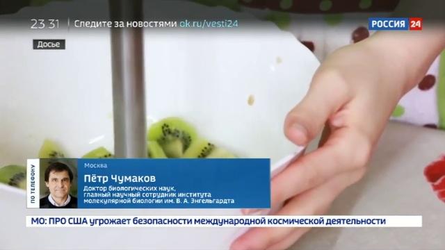 Новости на Россия 24 Биохакинг модный тренд на пути к долголетию или новая форма ЗОЖа