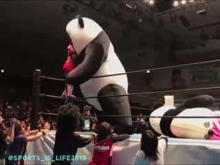 Удар панды 😊