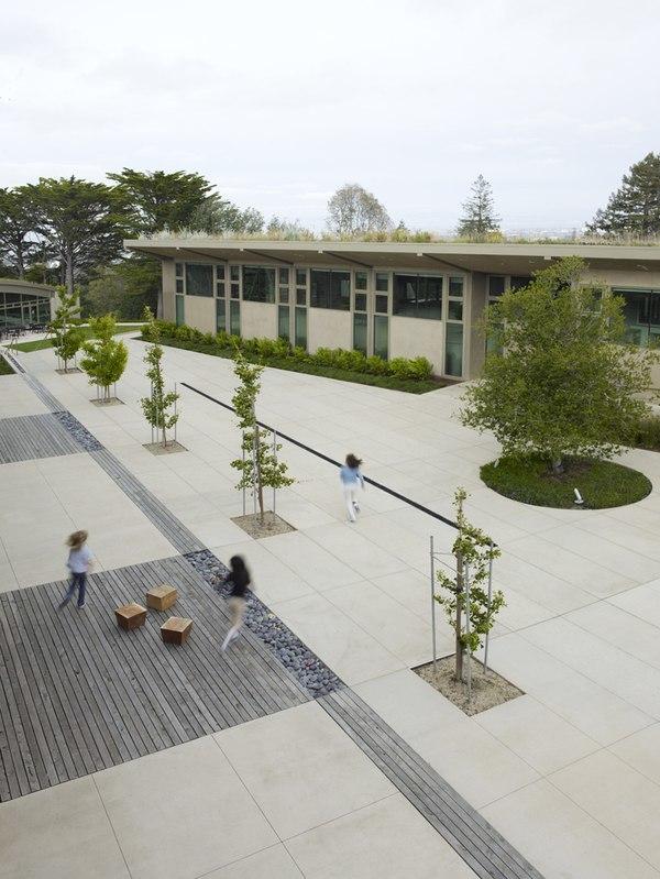 The Nueva School