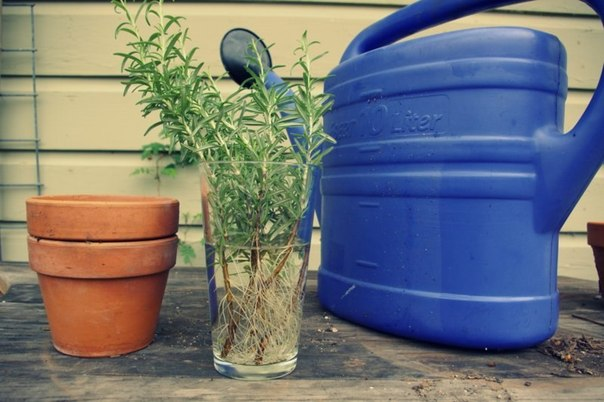 ёмкость для воды пластиковая в самаре