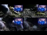 Дэвид Айк — Планета хищников