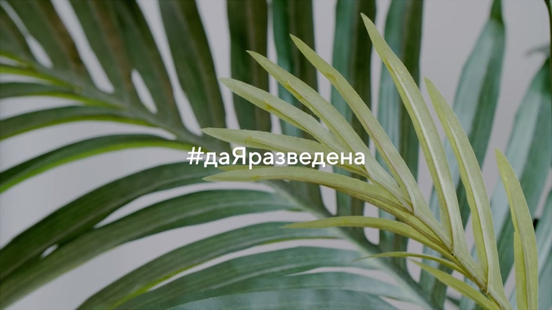 даЯразведена: Наташа Краснова, Юлия Началова и другие женщины о жизни после развода