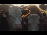 2014 Chevy Super Bowl Commercial: