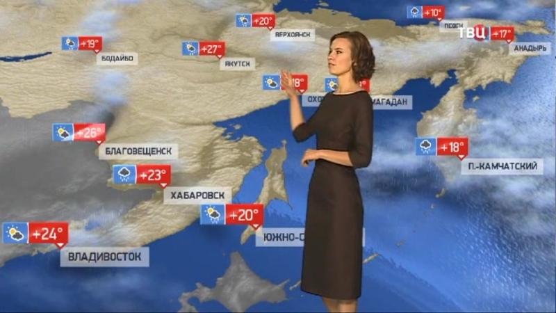 Погода сегодня завтра видео прогноз погоды на 19 8 2018 в России и мире