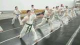 fkko_45_jyu_dan_dojo video
