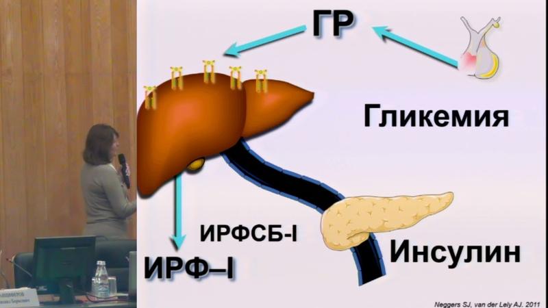Иловайская И А Нарушение углеводного обмена у пациентов с акромегалией возможности терапии