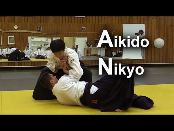 AIKIDO Tsuki Nikyo Shirakawa Ryuji shihan