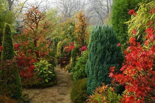 Какие удобрения вносить осенью – виды и дозировка