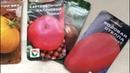 Низкорослые детерминантные сорта томатов! А надо ли их подвязывать Мое мнение...