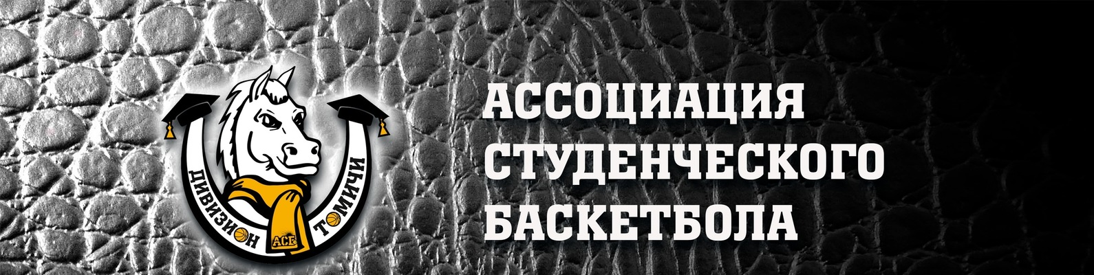 "71466741 АСБ. Дивизион ""Томичи"". | ВКонтакте"