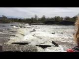 Шум воды. Мантра ОМ с Натальей Баланиной