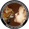 Помощь Детским Домам и Приютам для животных
