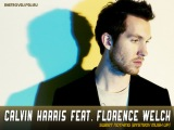 Calvin Harris feat. Florence Welch &amp Relanium  Sweet Nothing (Bystrov Mush Up)