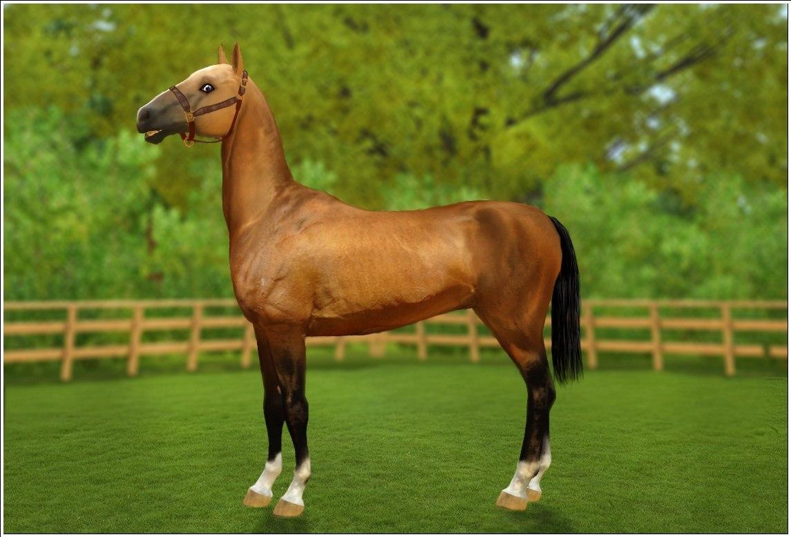 Заявки на удаление лошади из списка - Страница 2 4Yg-HiVZd1E