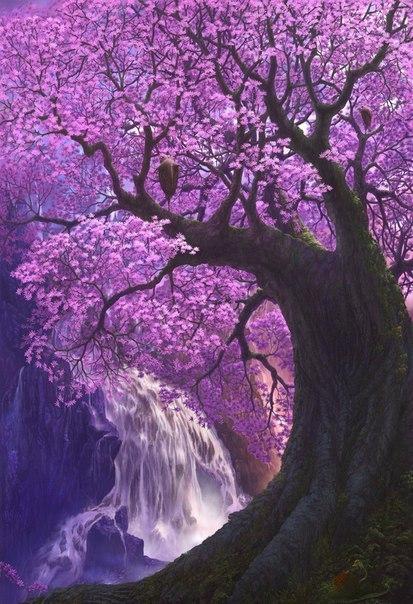 Только незрелый человек беспокоится о том, что скажут о нем или как его назовут. Неважно как называть сакуру, как ее не назови, она все равно цветет божественно.  © Сакума Шозан