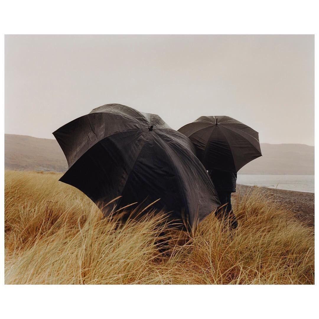 Большие стильные однотонные зонты -