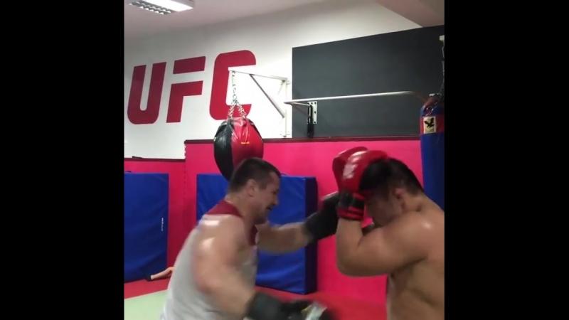 Мирко Кро Коп и Сатоши Ишии за работой!