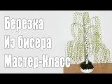 Деревья из бисера: мастер-класс плетения березы из бисера / Birch Bead