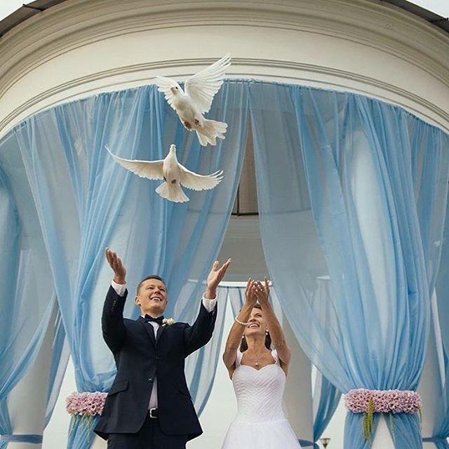 kcrUyzmFlH0 - Белые голуби на свадьбе